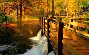 Картинка осень, лес, листья, вода, деревья, мост, природа, парк, река, вид, hdr, прогулка, forest, аллея, river, ...