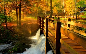 Картинка bridge, парк, river, hdr, leaves, fall, листья, reflection, trees, вода, walk, аллея, река, осень, лес, ...