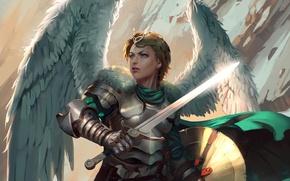 Картинка взгляд, фантастика, крылья, меч, доспехи, арт, щит, валькирия
