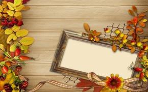 Картинка осень, листья, цветы, ягоды, рамка, vintage, background, autumn, leaves
