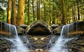 Картинка лес, деревья, ручей, камни, водопад, «черепаха»