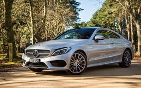 Обои Mercedes-Benz, мерседес, AMG, Coupe, C-Class, C205