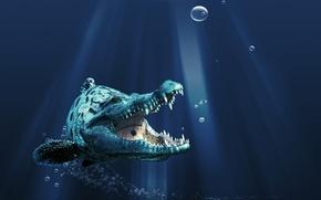 Обои Крокорыб, Пасть, Зубы
