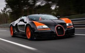 Картинка лес, фон, Бугатти, Bugatti, Вейрон, Veyron, суперкар, передок, гиперкар, Grand Sport, Vitesse, 16.4, World Record …