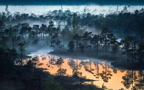 Обои лес, небо, природа, туман, озеро, река, леса