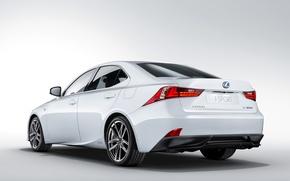 Картинка белый, фон, Lexus, лексус, задок, F-Sport, IS 300h