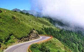 Картинка trees, nature, mountains, Road