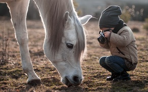 Картинка конь, ребёнок, камера