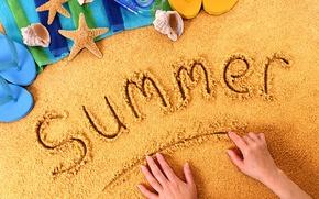 Картинка summer, beach, sand, sunny day, vacation, seashells