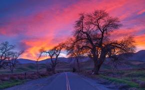 Картинка дорога, небо, облака, деревья, горы, вечер, зарево