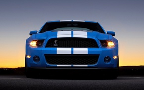 Обои Ford, shelby, gt 500