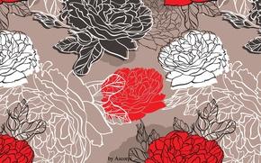 Картинка цветы, природа, пион, peony