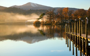 Картинка осень, вода, деревья, горы, туман, озеро, чайка, Утро, мостик