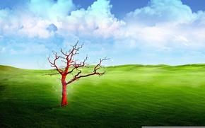 Обои небо, трава, облака, природа, дерево, красное, луг