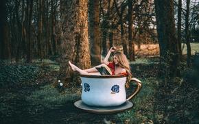 Картинка лес, девушка, чашка, книга, Rosie Hardy