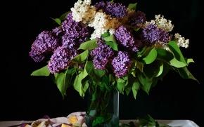 Картинка белый, букет, ваза, лиловый, платок, сирень