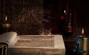 Обои свеча, Книга, мыши