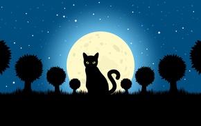 Картинка кот, звезды, луна, тень