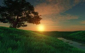 Картинка поле, трава, закат, река, дерево, луг, арт, речка