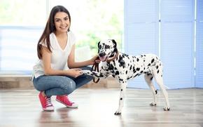 Картинка собака, dog, dalmatian, далматин
