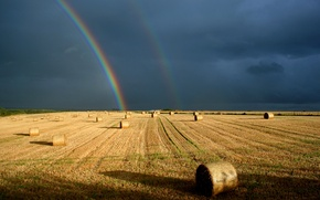 Картинка поле, небо, радуга, контраст, роллы
