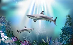 Обои акулы, лучи света, подводный мир, кораллы, 3D, море, синева, пузырьки, под водой