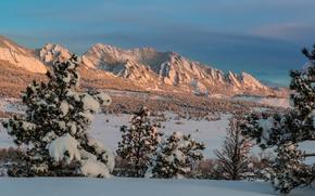 Картинка зима, лес, снег, деревья, горы, елки