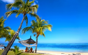 Картинка песок, море, пляж, тропики, пальмы, берег, summer, sunshine, beach, sea, ocean, paradise, vacation, palms, hammock, …