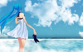 Картинка Море, Аниме, Чайки, Hatsune Miku, Хатсуне Мику