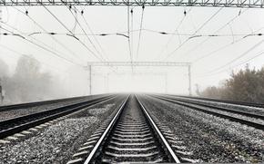 Картинка туман, рельсы, утро, железная дорога, РЖД