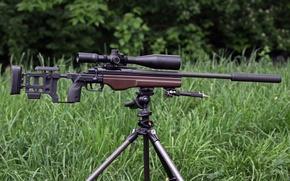 Картинка лес, трава, прицел, винтовка, снайперская, TRG‑22, Sako