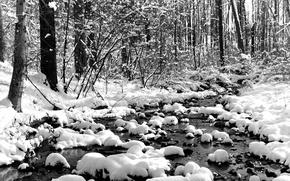 Обои зима, снег, ручей