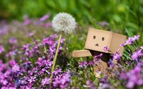 Обои цветы, макро, растения, одуванчик, danbo, розовые, трава, весна
