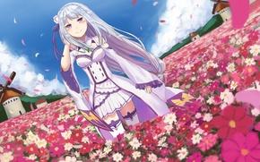 Картинка девушка, цветы, поляна, мельницы, anime, art, Emilia, Re: Zero kara Hajimeru Isekai Seikatsu