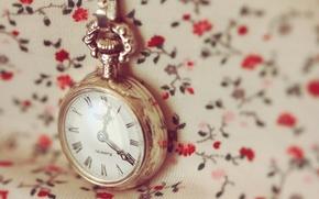 Картинка макро, время, обои, часы, циферблат, цепочка, цветочки