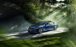 Обои лес, свет, BMW, 7 Series, Alpina
