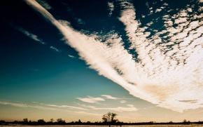 Картинка облака, пейзаж, закат, природа, дерево, Поле
