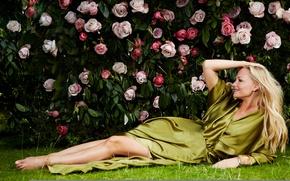 Картинка розы, лежит, певица, Emma Bunton