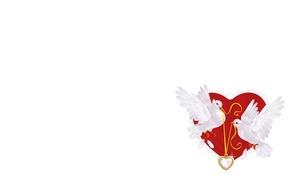 Картинка праздник, сердце, арт, голуби, свадьба