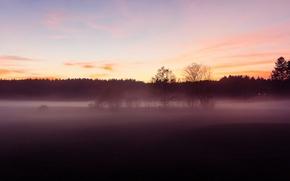 Картинка lights, windows, house, twilight, sunset, fog, dusk, countryside, farm, mist, woodland, silhouettes, farmland