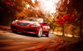 Обои Красный, Осень, Infiniti