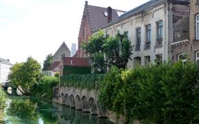 Картинка зелень, деревья, мост, дома, канал, Бельгия, кусты, Bruges