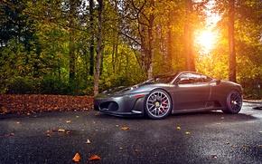 Картинка Ferrari, Green, Sun, Autumn, Tuning, asphalt, Silver, 430, Wheels, Trees, Leaf