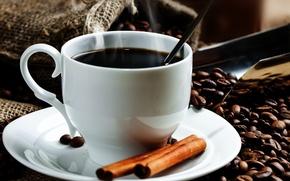 Обои блюдце, кофейные зерна, чашка, мешок, корица, кофе