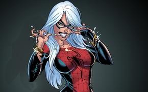 Картинка suit, Spider-Man, Black Cat, Felicia Hardy