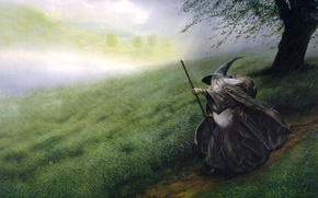 Картинка поле, дождь, Гендальф