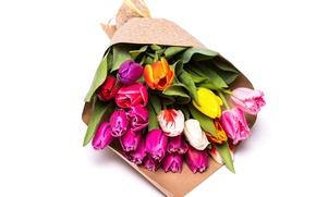 Картинка Цветы, желтые, тюльпаны, розовые, Tulips, multicolored, Bouquets