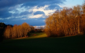 Картинка осень, небо, трава, деревья, тучи