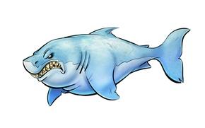 Обои рыба, акула, светлый фон, shark, зубастая