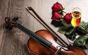 Картинка цветы, вино, скрипка, бокал, розы